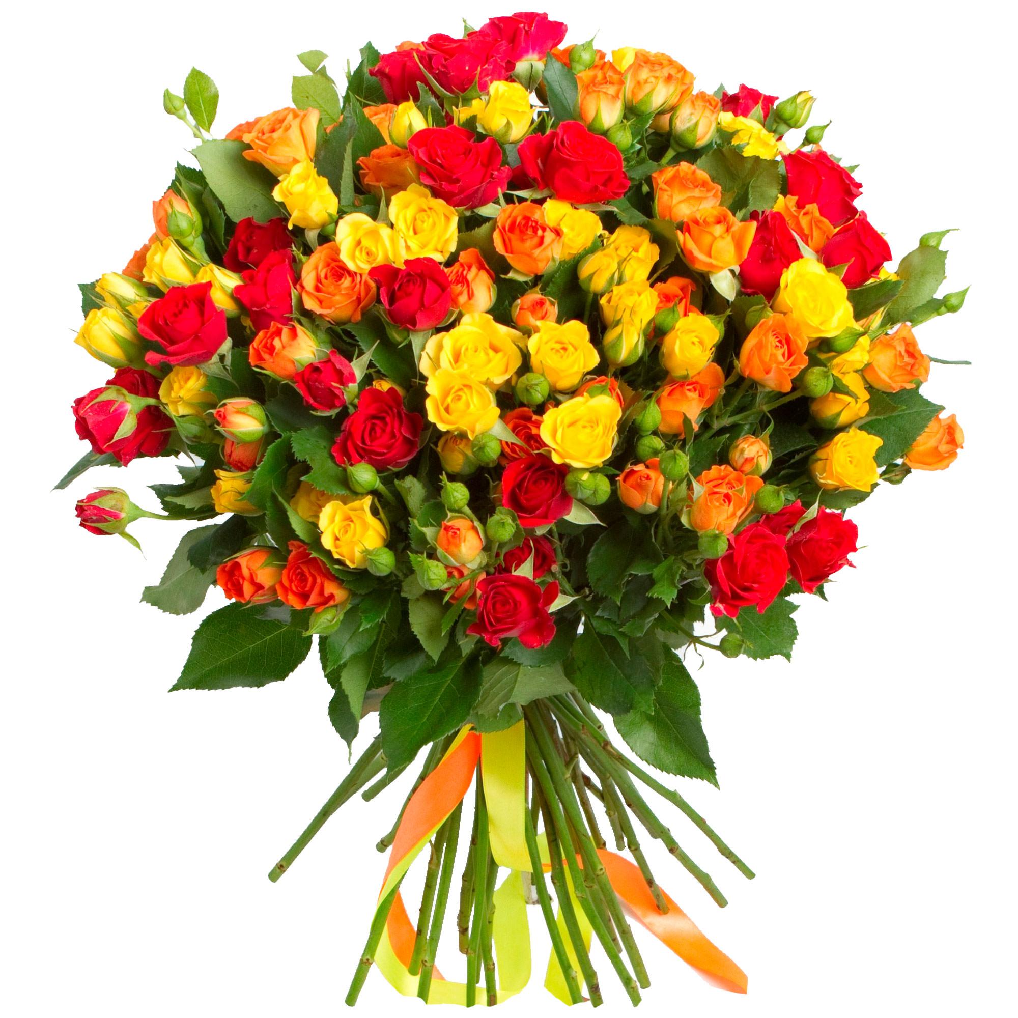 Открытки розы мелкие