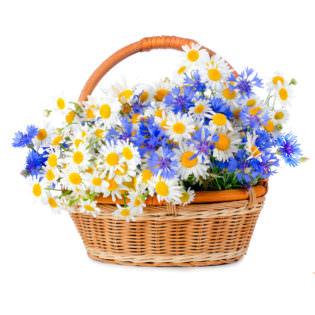 Цветы в корзинке «Весенний луг»